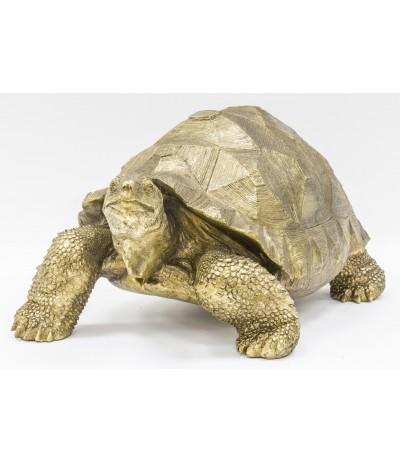 A.P.Żółw złoty