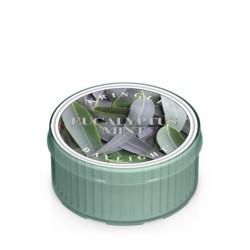 Kringle Świeca 12h Eucalyptus mint