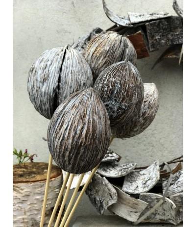 Suszony kokos Bielony na piku