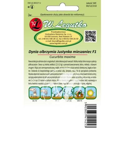 L.Dynia olbrzymia Justynka