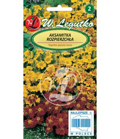 L.Aksamitka rozpierzchła mix