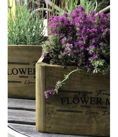 O.Skrzyneczka drewniana Flower Market