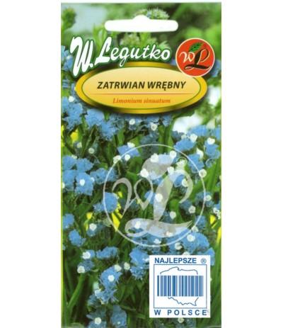 L.Zatrwian wrębny niebieski