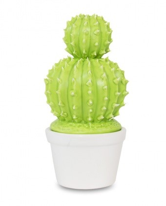 A.P.Pojemnik kaktus