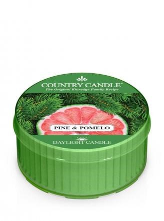 Country Candle Świeca 12h Pine& Pomelo