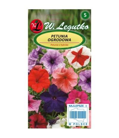 L.Petunia ogrodowa