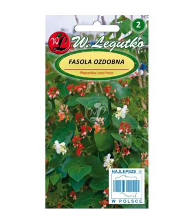 L.Fasola ozdobna