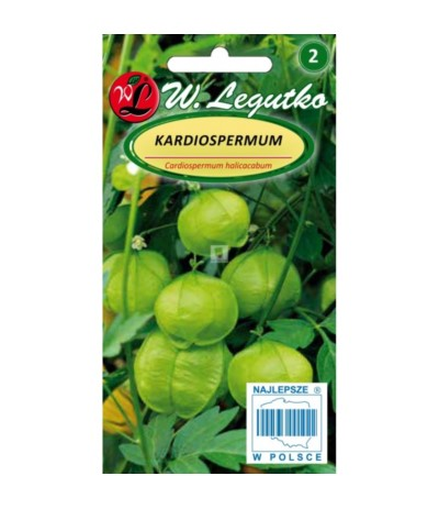 L.Kardiospermum