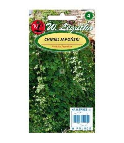 L.Chmiel japoński