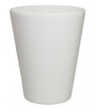 C.Osłonka storczykówka Calypso