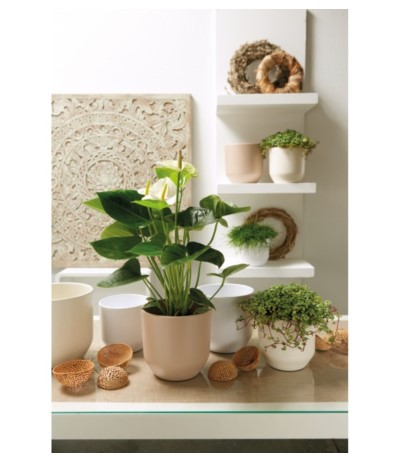 C.Osłonka ceramiczna 13 cm biała