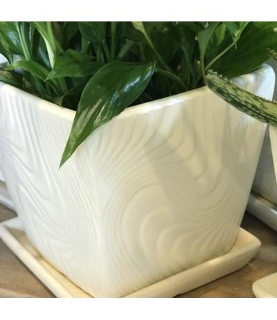 Dol Donica ceramiczna z podst