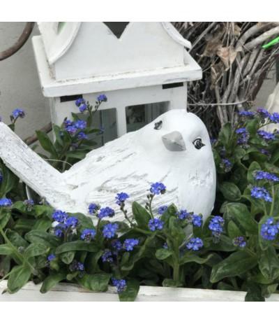 D.P.Figurka ptak
