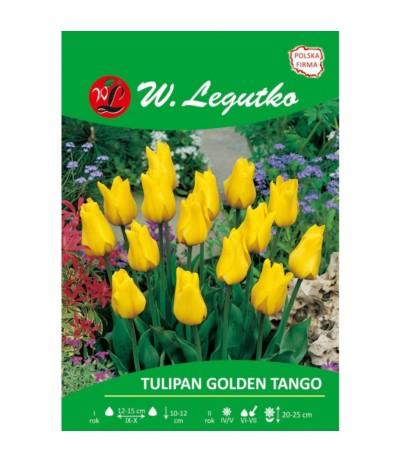 L.Tulipan Golden Tango 5szt
