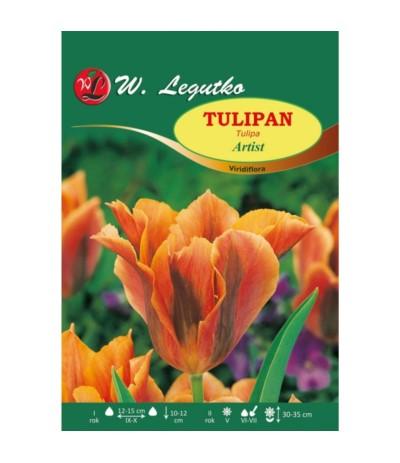 L.Tulipan Artist 4szt