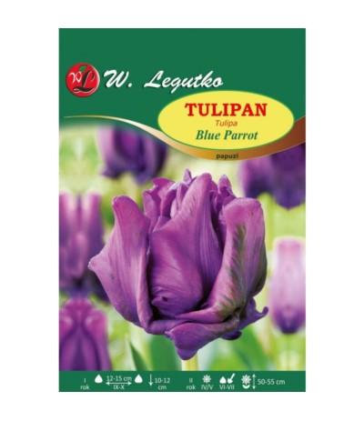 L.Tulipan Blue Parrot 4szt