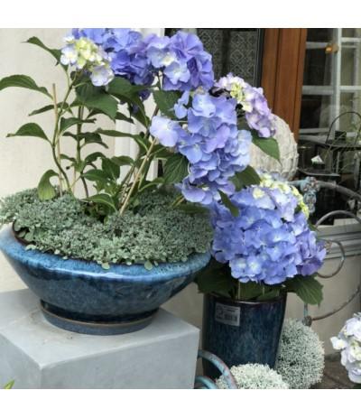 Dol Donica ceramiczna blue