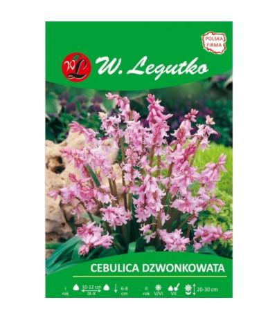 L.Cebulica dzwonkowata różowa 5szt