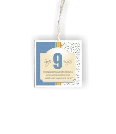 """D.Tabliczka kwadrat """" 9 urodzinki nieb"""