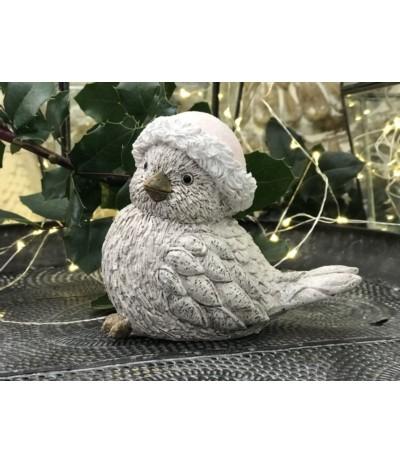Ptaszek w niebieskiej czapeczce B.N.