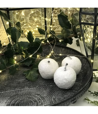 Jabłuszko zimowe białe B.N.